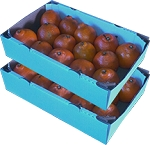 2 Trays - Honeybells with...