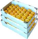 3 Trays - Honey Tangerines with...