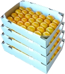 4 Trays - Honey Tangerines with...