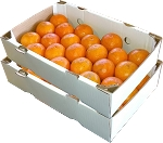 2 Trays - Page Oranges with...