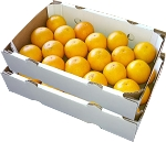 2 Trays - Pineapple Oranges with...