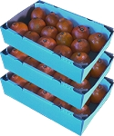 3 Trays - Honeybells with...